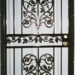 Black Security Door With Grape And Vine Casting
