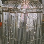 Large Decorative Iron Bird Cage